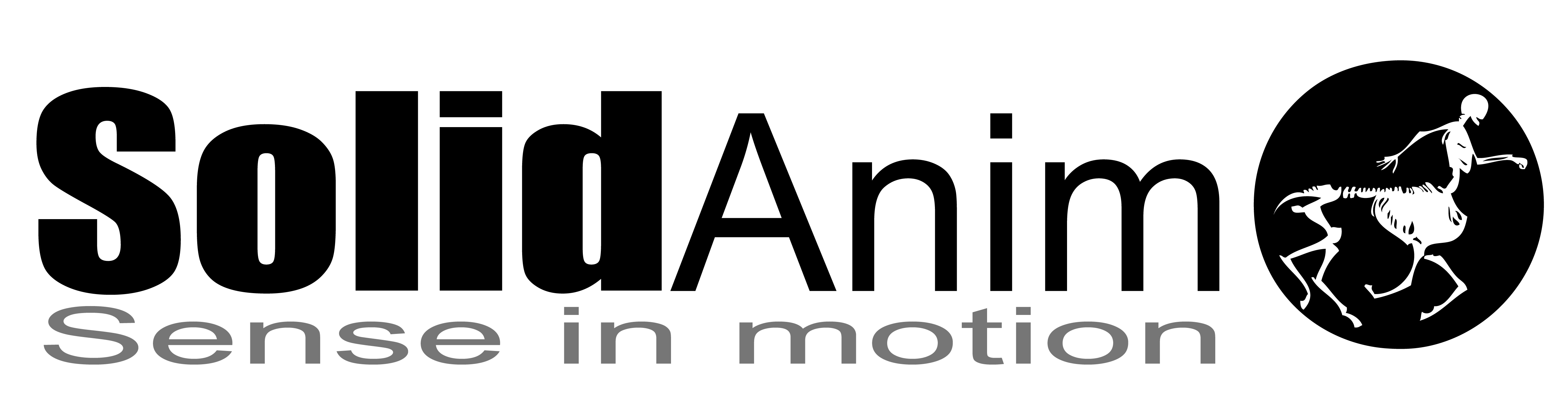 Logo SolidAnim